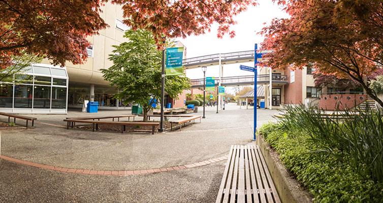 کالج کاموسان کانادا